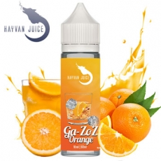Hayvan Juice Ga-Zoz Orange Aroma 10ml