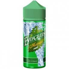 Evergreen Mango Mint Longfill Aroma