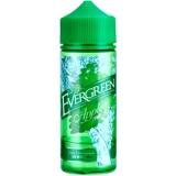 Evergreen Apple Mint Longfill Aroma