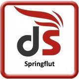 Damfaroma Springflut